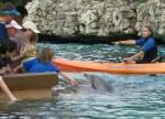 SeaWorld, Orlando (2384 views)